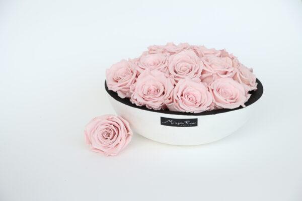 Rose stabilizzate in scatola